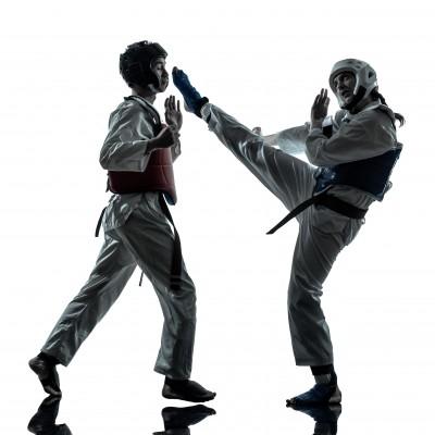 Taekwondo world championships